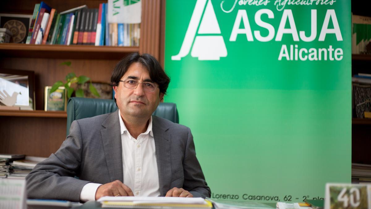 José Vicente Andreu, vice president of ASAJA, at the Alicante headquarters
