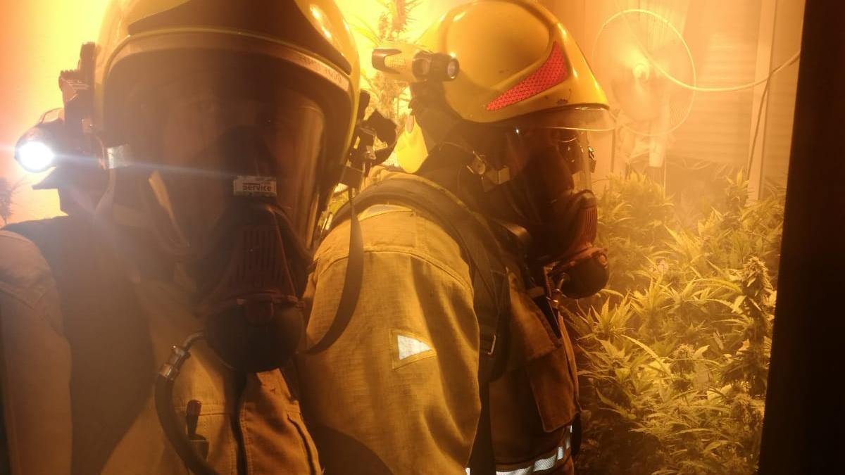 Imagen de la intervención de los bomberos en la vivienda con un plantación de marihuana