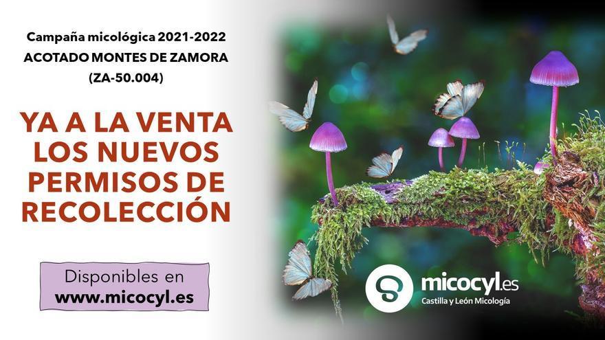 La campaña micológica 2021-2022 da inicio en Zamora