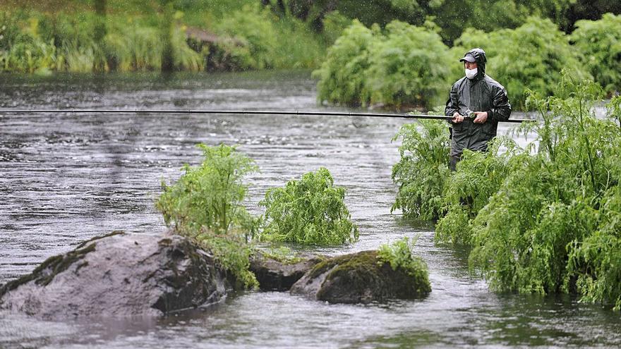 La pesca de salmón en el Ulla cierra con ocho capturas, los peores datos desde el año 2000