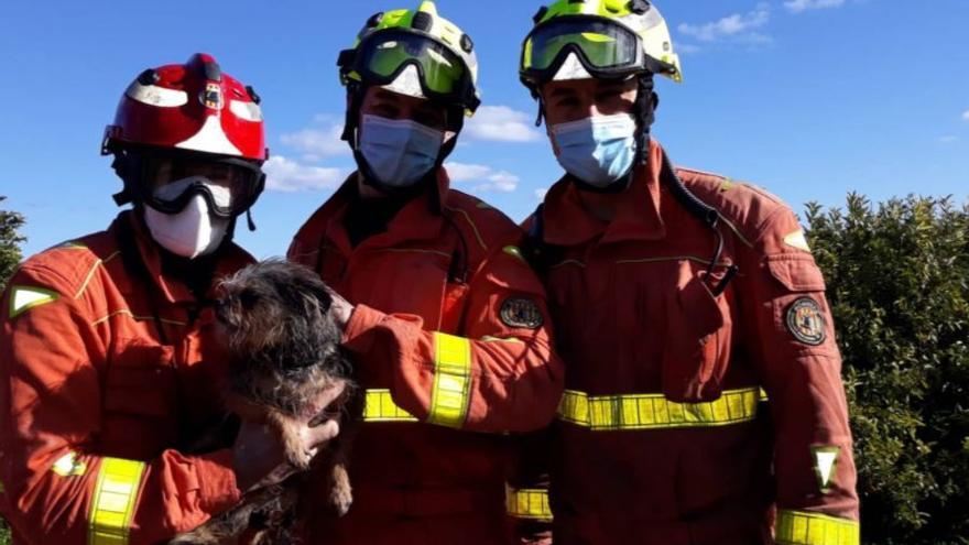 Rescatan a un perro atrapado en una tubería de Moncada