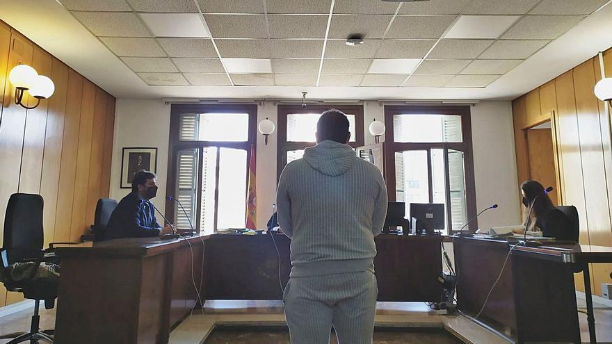 Seis meses de cárcel por dejar once gallinas en una furgoneta en Palma