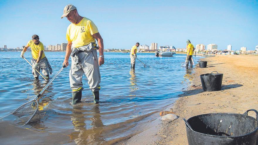 """Marchamalo, la """"única solución"""" para oxigenar el agua del Mar Menor"""