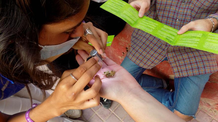 Un 70% de los jóvenes de Castellón de entre 13 y 25 años ha consumido marihuana