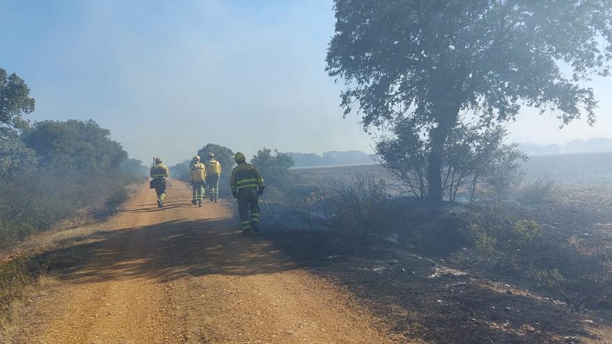 Nuevos incendios forestales en Pozuelo de Vidriales, Camarzana y Valdescorriel