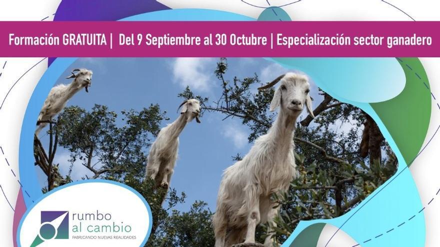 Arrabal-AID fomenta en 'Rumbo al Cambio' el emprendimiento en el sector caprino