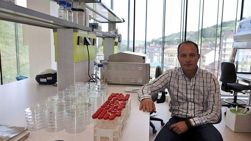 """El CINN ayuda a descubrir un método que mejora el cultivo de """"células madre"""""""