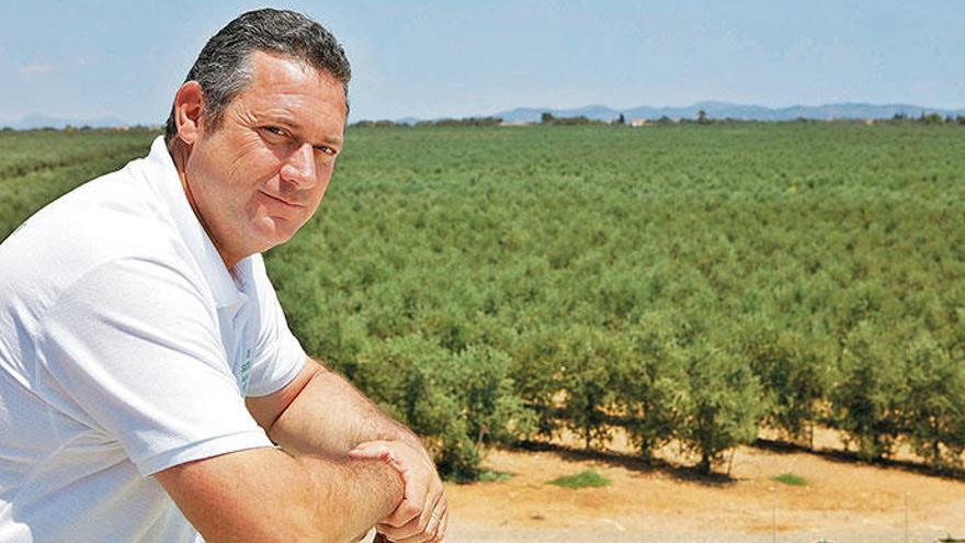 Besuch beim größten Olivenölproduzenten der Insel