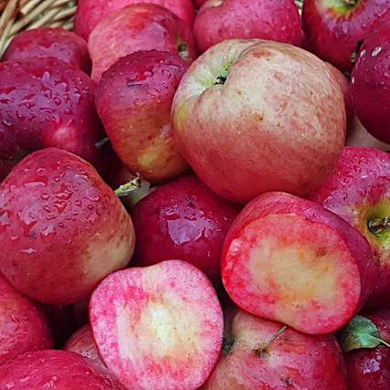 Detalle de les curioses frutes.