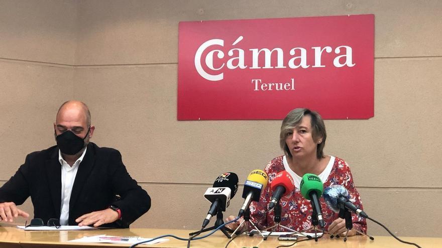Convocadas ayudas de 500.000 euros para el pequeño comercio de Teruel