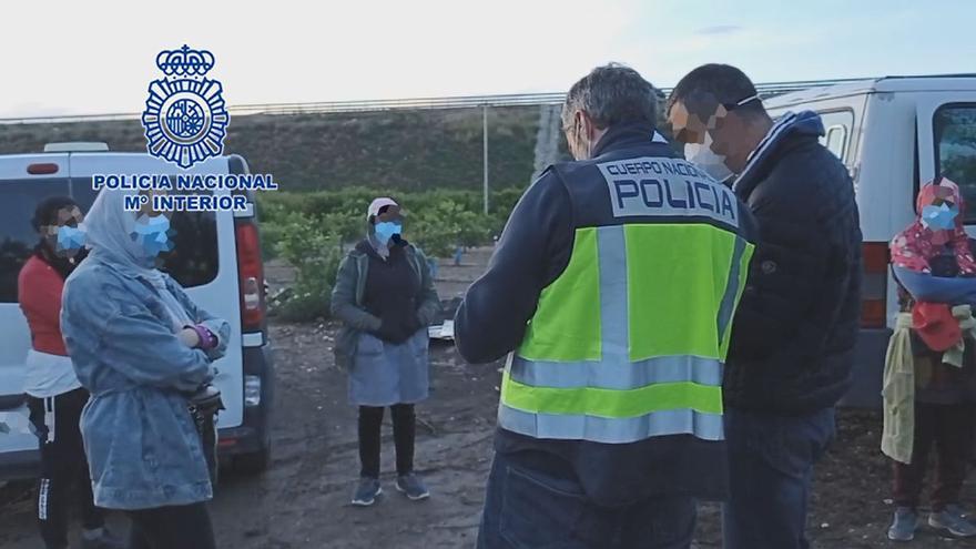 Detenidos capataz y encargado de una finca de Murcia por abuso sexual