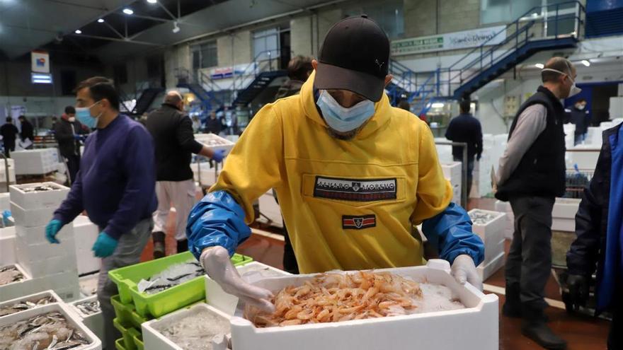 Las ventas en Mercacórdoba se mantienen inalterables a pesar de la pandemia