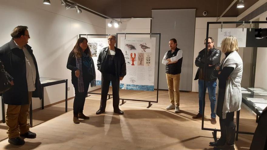 Una exposició a Castelló recorda l'aportació de Jordi Sabater Pi al dibuix científic