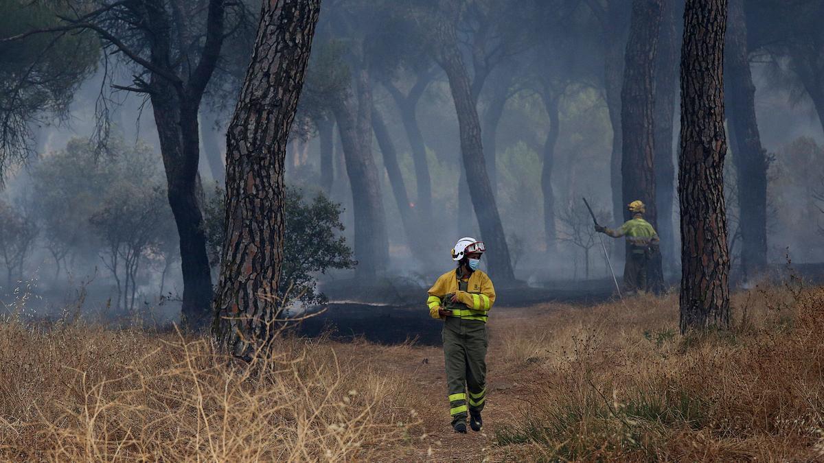 Medios de la Junta trabajando en la extinción del incendio originado en Lober de Aliste