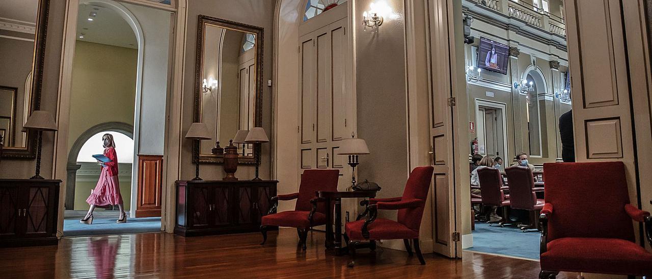 Austrlia Navarro pasa por uno de los pasillos del Parlamento regional en una imagen de archivo.     RAFA AVERO
