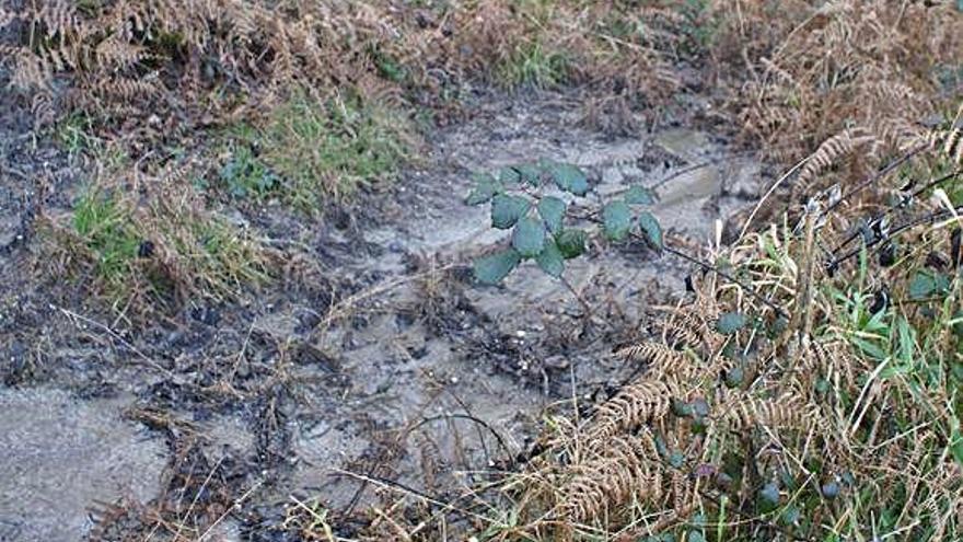 El BNG denuncia vertidos de lodos que llegan a afluentes del Mandeo