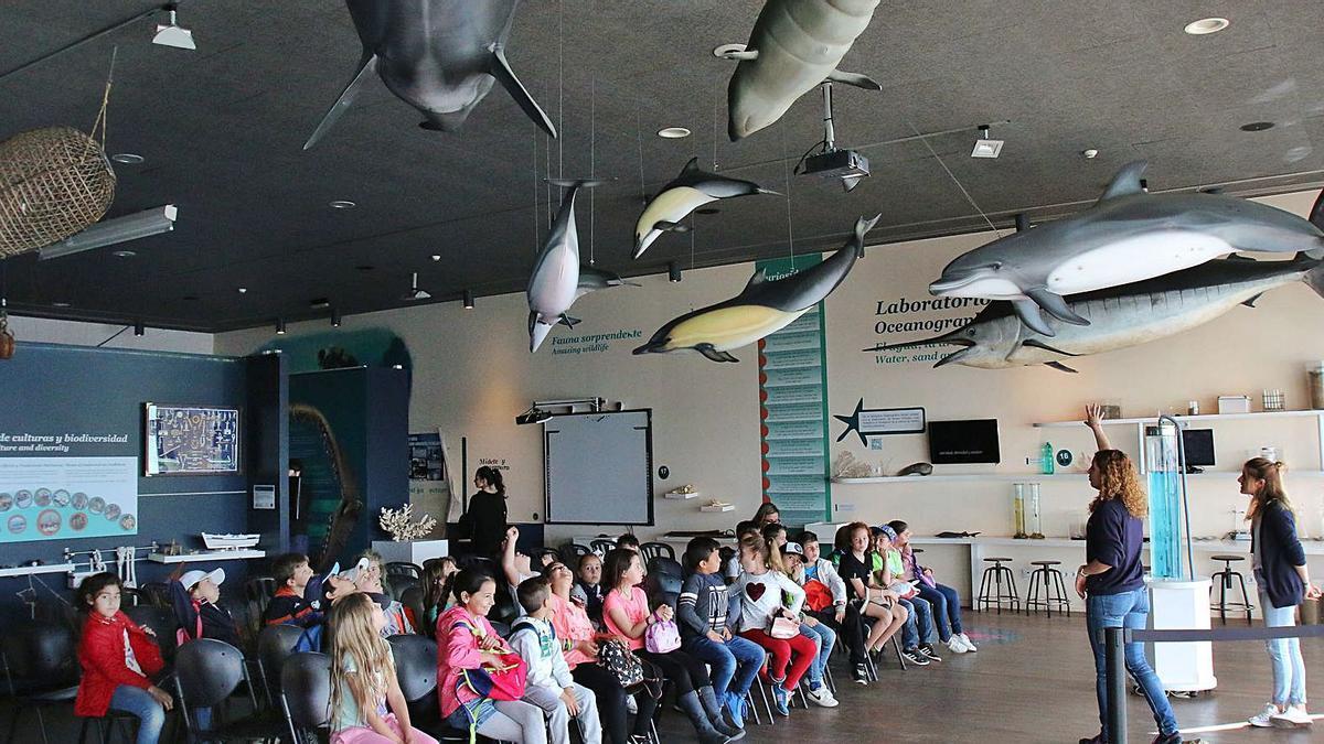 El Museo Alborania-Aula del Mar, en una foto de archivo. | GREGORIO TORRES