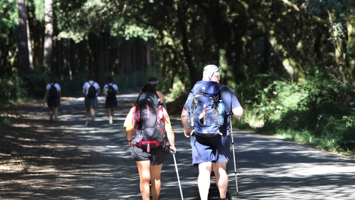 Peregrinos durante el Camino de Santiago