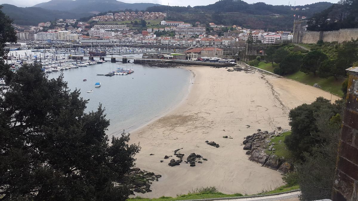 Barbeira_Baiona_Brea.jpg