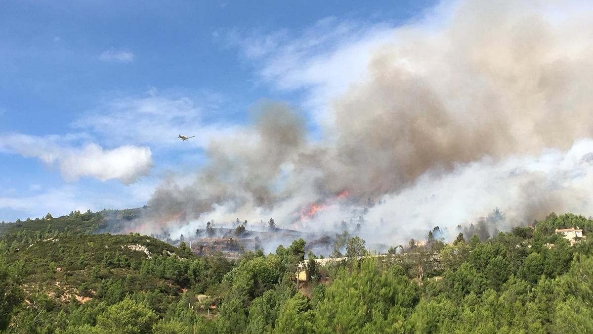 Incendio junto a la A-3 a la altura de Buñol