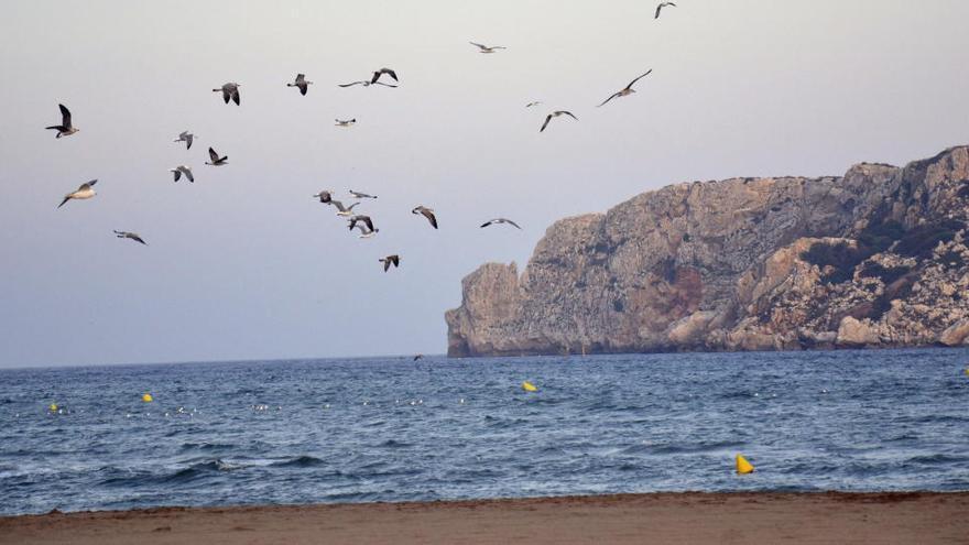Un terremoto de 3,5 grados se deja notar en la costa de Girona