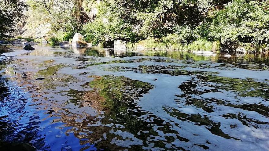 El río Deza sigue con espuma a su paso por Carboeiro