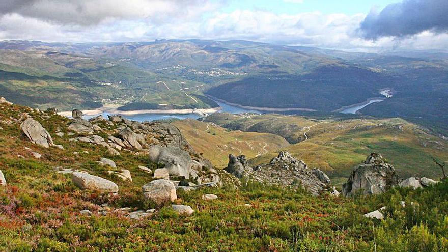 Cabreiroá se une a WWF España en la restauración forestal de la Serra do Xurés