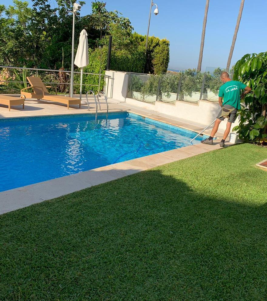 ¿Cuándo es buen momento para cuidar tu jardín y exteriores comunitarios?