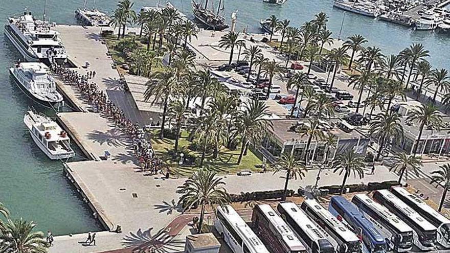 Colas para hacer salidas náuticas en los catamaranes por la bahía de Palma