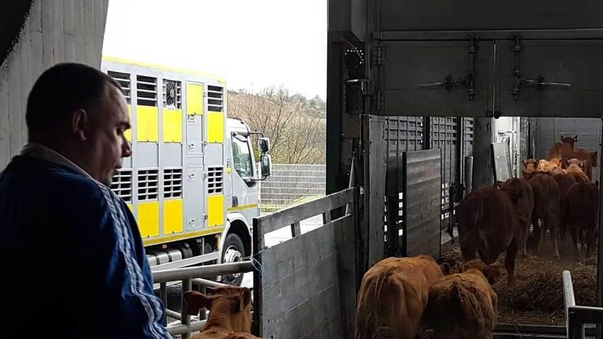 La ganadería, resignada a reducir su actividad
