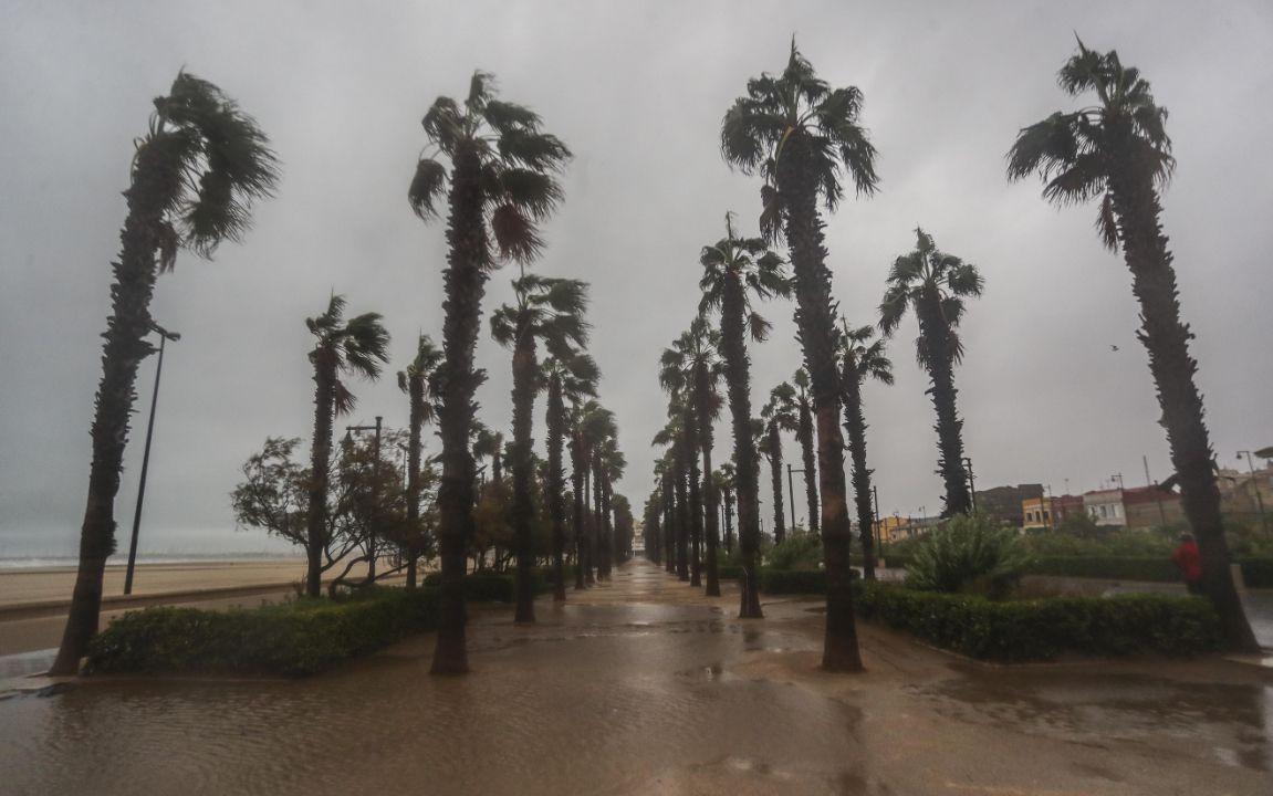 Playa de las Arenas - Espigón de La Marina de València