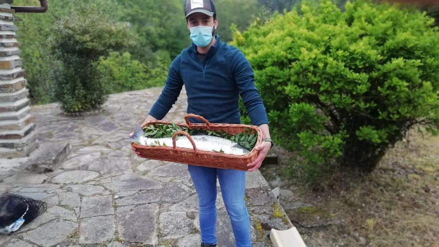 El campanu de Asturias, capturado en el coto de La Volta del  río Eo
