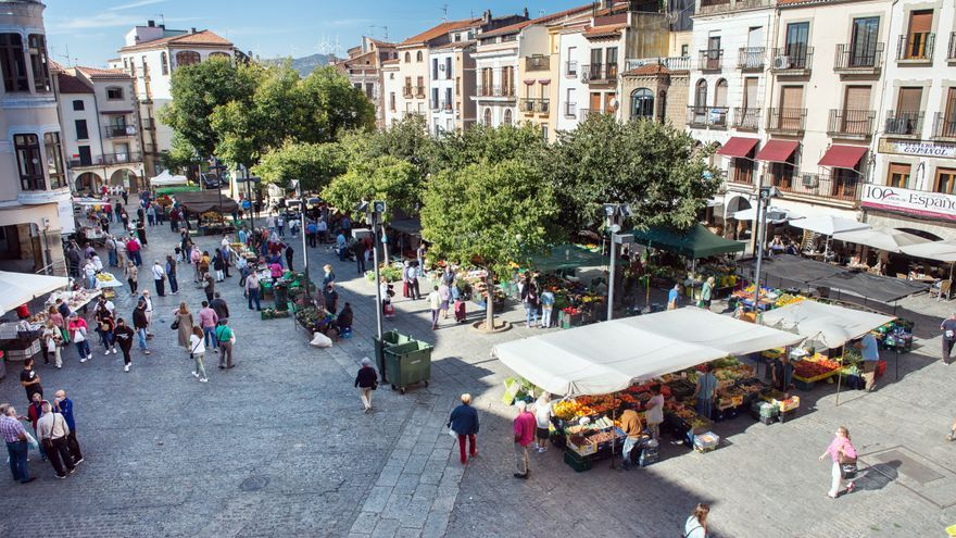 El mercado de frutas y verduras de Plasencia, al completo en la plaza Mayor