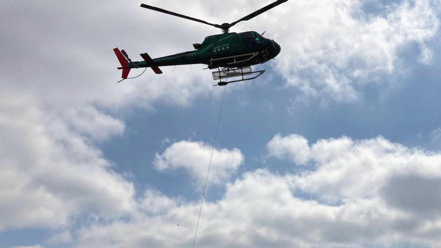 Fan un simulacre d'actuació de pesta porcina africana en senglars amb l'ajuda de drons i un helicòpter a Olost