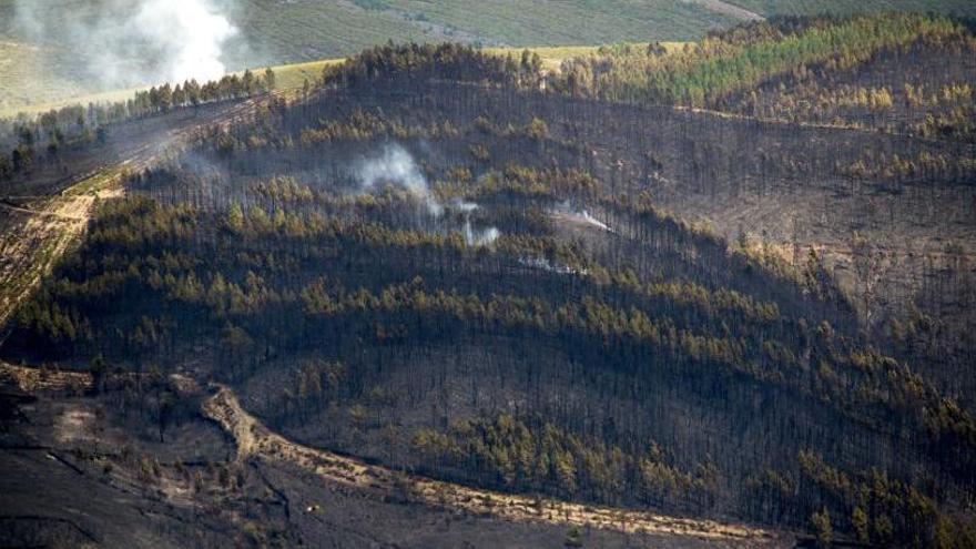 Activo un incendio en Val do Dubra que arrasa 20 hectáreas