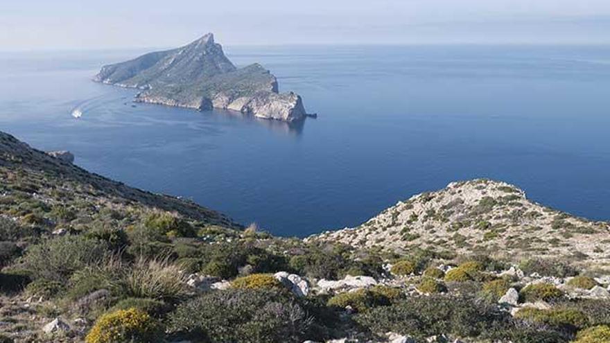 La Fundación Marilles y Save The Med renuevan su colaboración para impulsar acciones para proteger la reserva de sa Dragonera
