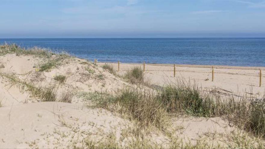 Hallan el cuerpo en descomposición de un hombre en la playa de Oliva