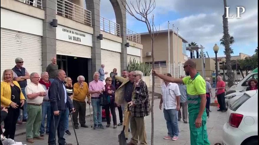 Pepe Dámaso ayuda a plantar un árbol en La Isleta