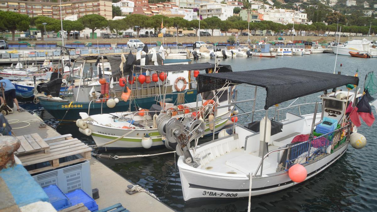 El port pesquer de Roses, amb la seva varietat de colors.