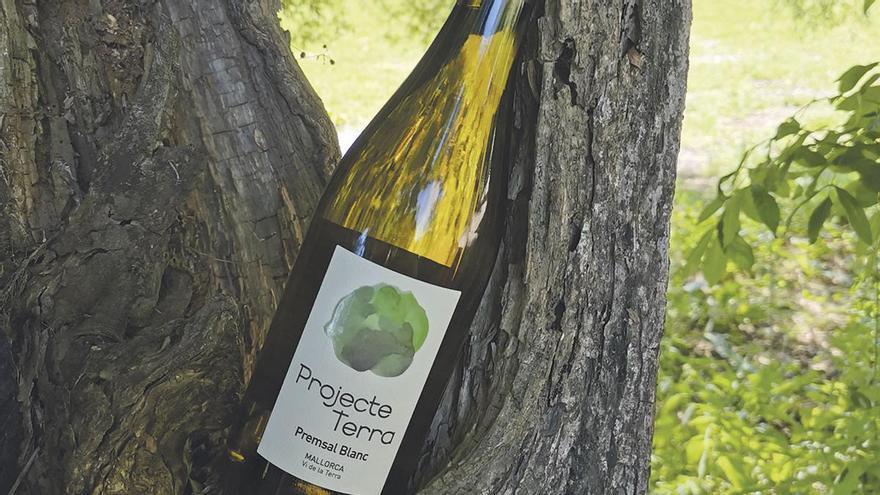 Projecte Terra presenta sus nuevos vinos ecológicos