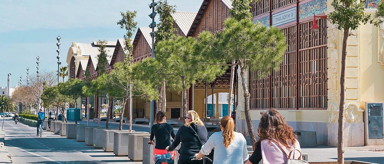 Tinglado 2 de la Marina de València, en espera de un proyecto de mejora urbana para convertirlo en gran plaza pública | LEVANTE-EMV