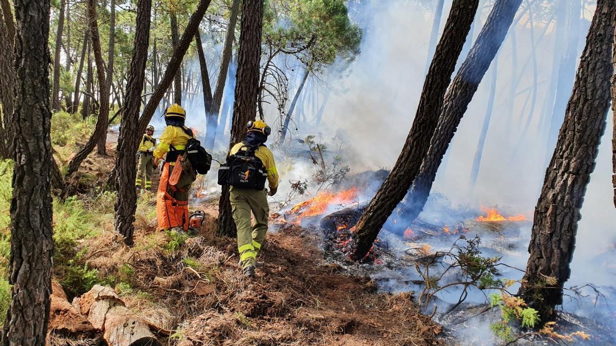 Miembros del Infoca, sobre el terreno afectado por el incendio de Jubrique.