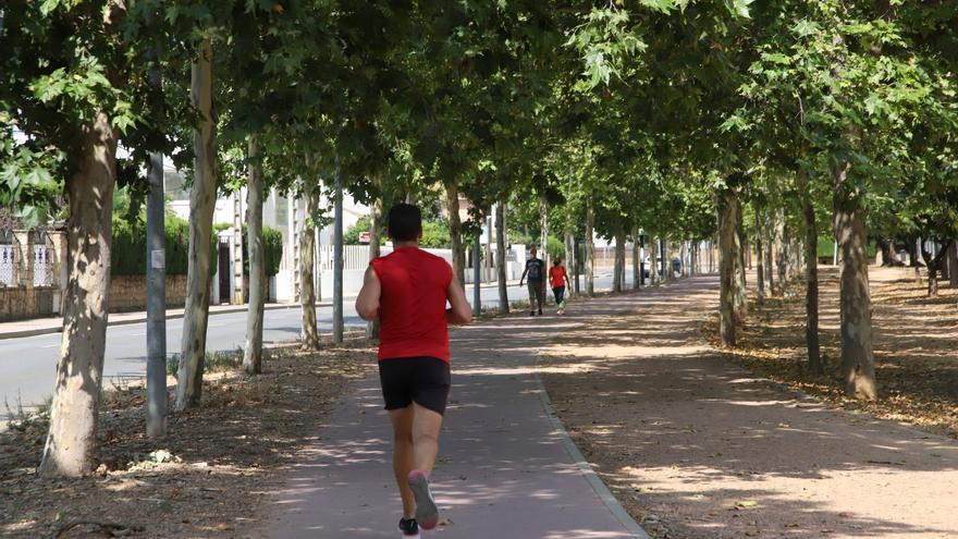 El Ayuntamiento saca a concurso la reforma del parque urbano y el circuito de El Tablero por 1 millón