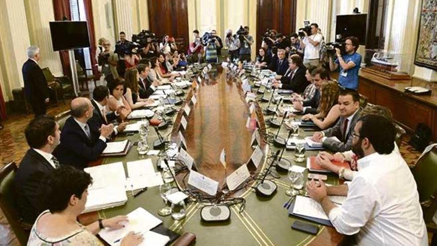 Balears recibirá 983.000 euros para paliar los efectos de la 'Xylella fastidiosa'