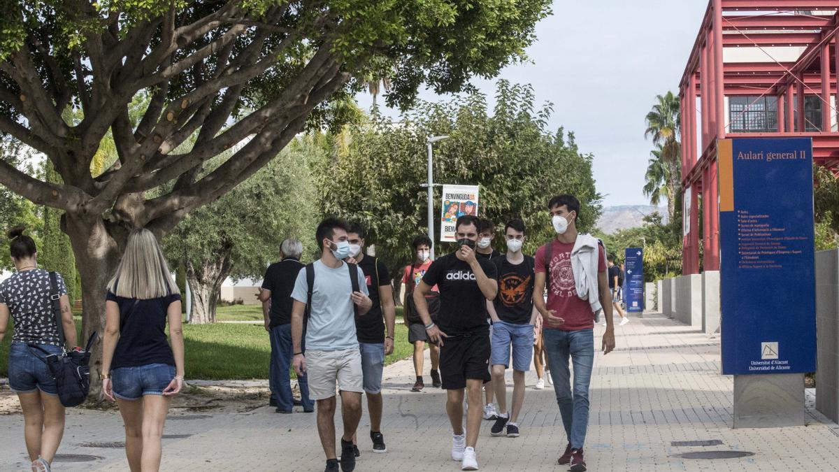 Alumnos en la UA