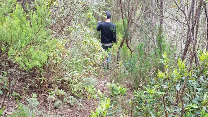 Rescatan a dos menores tras perderse haciendo senderismo en Anaga