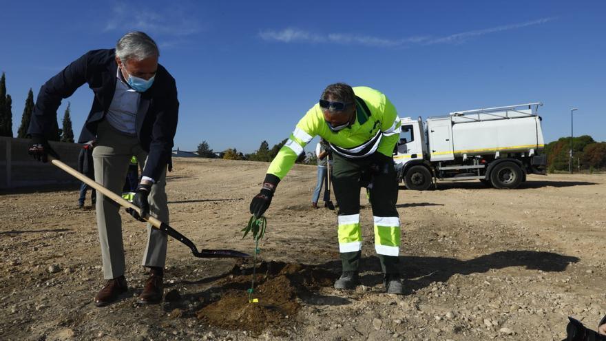 El Bosque de los Zaragozanos planta su primer árbol y espera llegar a 700.000
