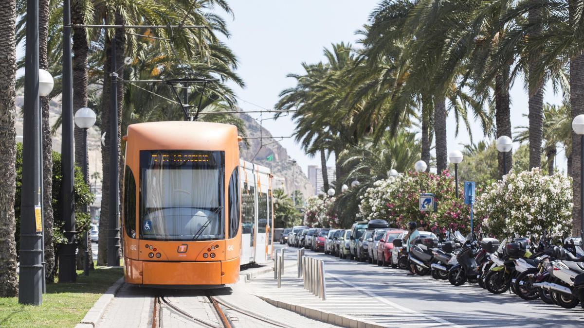 FGV mejorará los accesos a doce estaciones del TRAM de Alicante