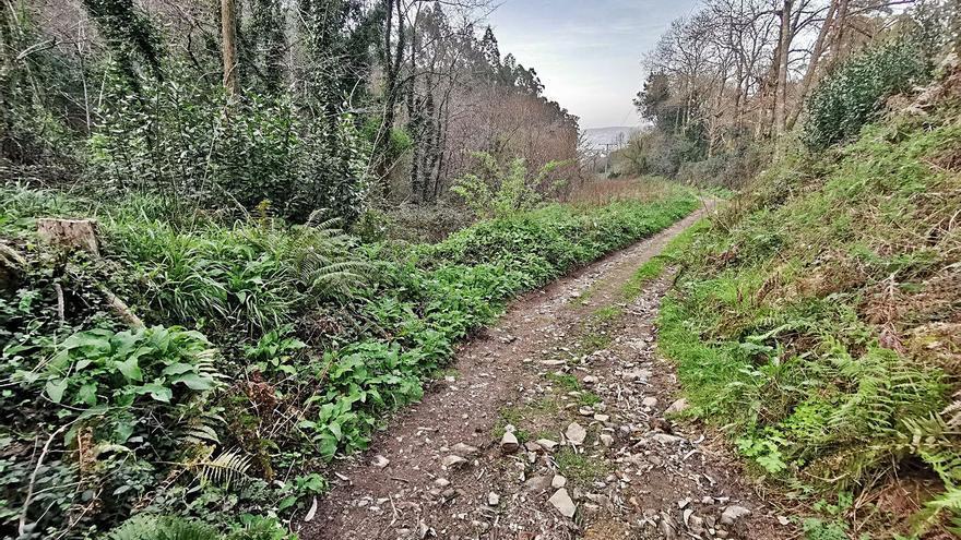 El concello acondicionará un sendero del río Bispo con dinero del Fondo de Compensación Ambiental