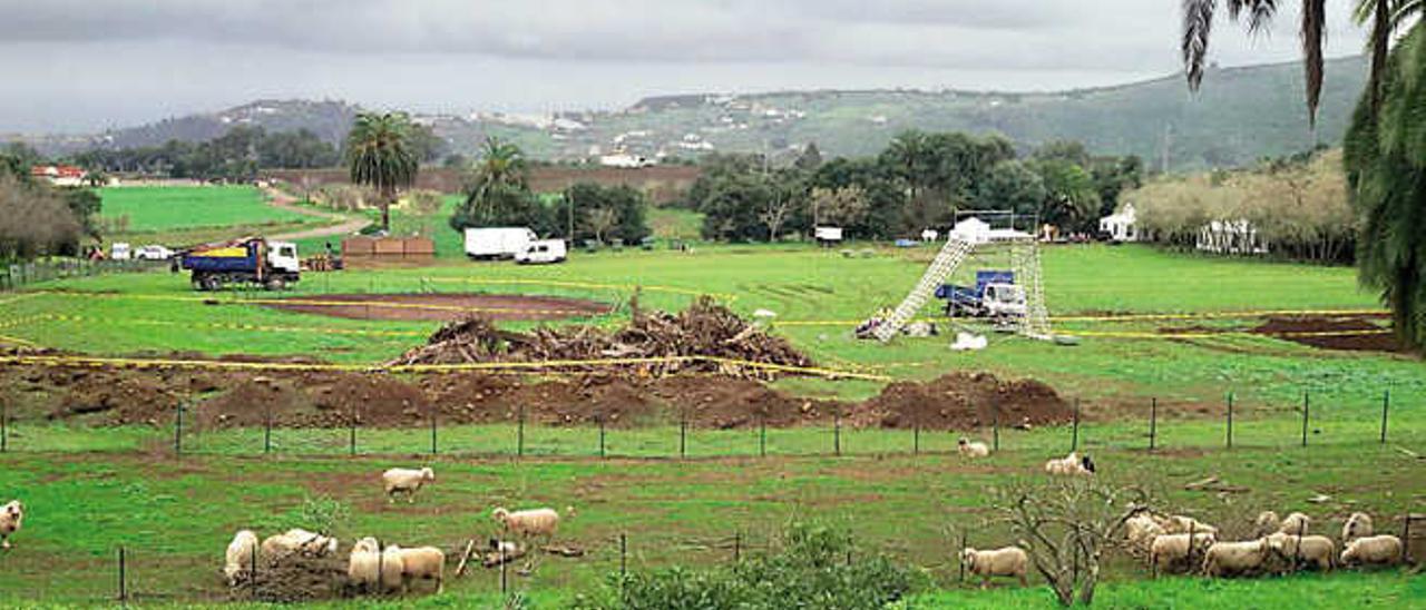 Imagen del escenario de la prueba, en el Parque Rural de Doramas.